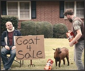 doritos goat.jpg