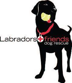 LAF_Logo1_sm_235x270.jpg