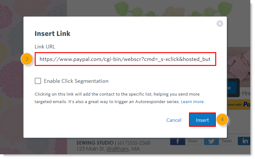 3ge-insert-link-overlay-paypal-url-and-insert-button-step34.png