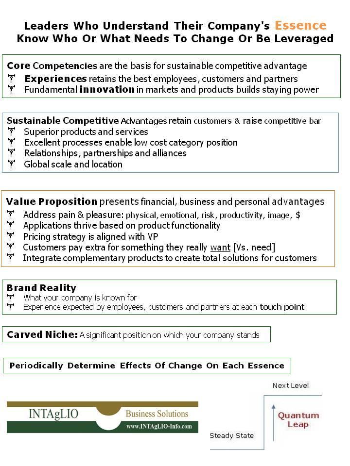 Infographic_Company Essence.jpg