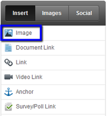 Insert - Images.png