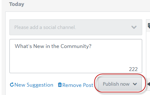 Social Share Publish Now.png