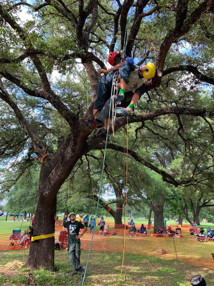 Texas ISA Tree Climbing Championship 2019 Georgetown Texas.JPG
